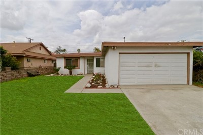 Single Family Home For Sale: 3157 Paddy Lane