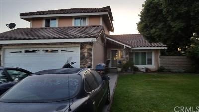 Fontana Single Family Home For Sale: 6872 Blanchard Avenue