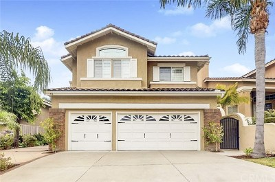 Anaheim Hills Single Family Home For Sale: 916 S Creekview Lane
