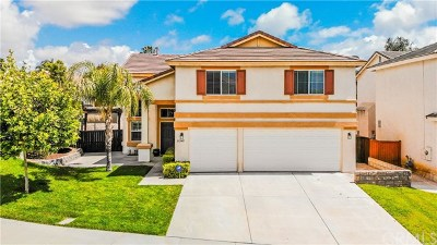 Murrieta Single Family Home For Sale: 39540 Vanderbilt Avenue