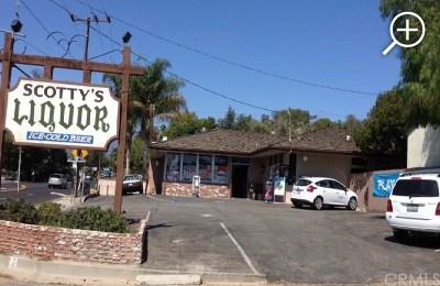Ventura County Commercial For Sale: 910 Ventura Avenue