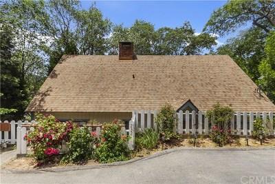 Lake Arrowhead Single Family Home For Sale: 232 Sunset Drive