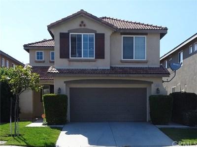 Menifee Single Family Home For Sale: 29125 Salrio Drive
