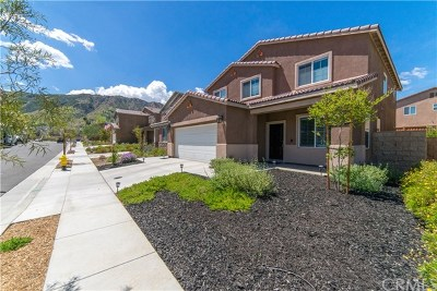 Lake Elsinore Single Family Home For Sale: 30015 Cottage Ln