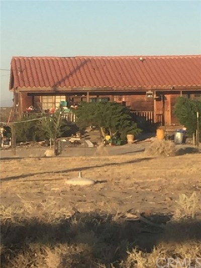 El Mirage Single Family Home For Sale: 18837 Silver Rock Road
