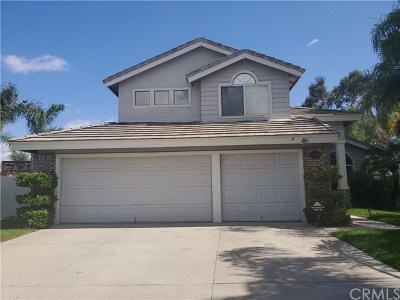 Lake Elsinore Single Family Home For Sale: 29104 Tradewinds Cir