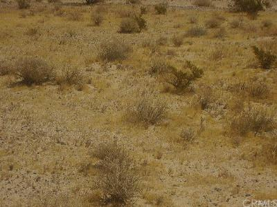 Newberry Springs Residential Lots & Land For Sale: 41501 Field