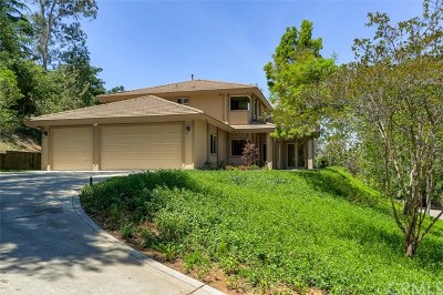 Redlands Single Family Home For Sale: 1706 Dwight Street