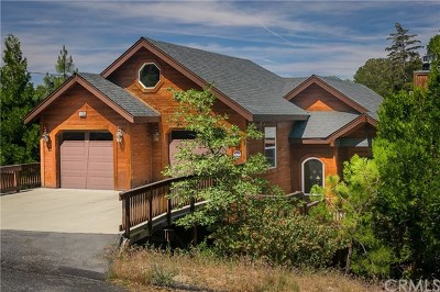 Lake Arrowhead Single Family Home For Sale: 1175 Klondike Drive