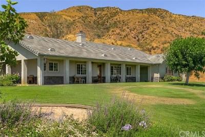 San Bernardino Single Family Home For Sale: 5533 Sepulveda Avenue