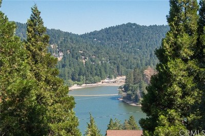 Crestline Single Family Home For Sale: 400 Wylerhorn Drive