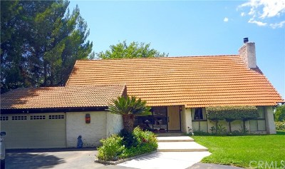 Redlands Single Family Home For Sale: 30805 Palo Alto Drive
