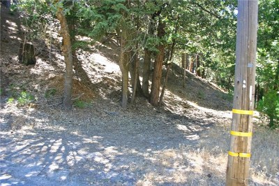 Lake Arrowhead CA Residential Lots & Land For Sale: $19,900