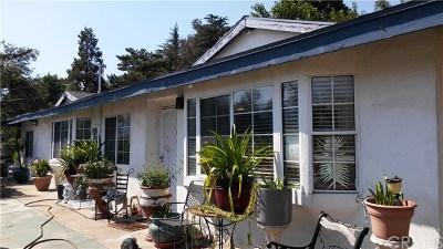 San Bernardino Single Family Home For Sale: 17994 W Kenwood Avenue