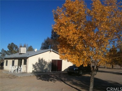 Newberry Springs Single Family Home For Sale: 47998 Lake Irene Drive