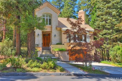 Lake Arrowhead Single Family Home For Sale: 462 Bay View Drive