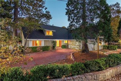 Lake Arrowhead Single Family Home For Sale: 981 Tirol Way