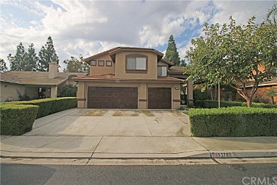 Fontana Single Family Home For Sale: 13789 Mesquite Drive