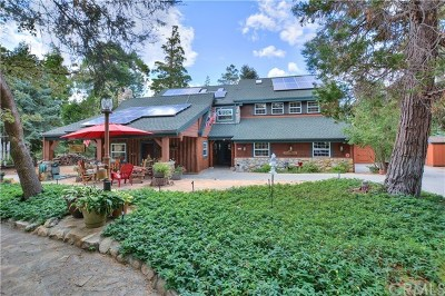Lake Arrowhead Single Family Home For Sale: 200 Grandview Drive