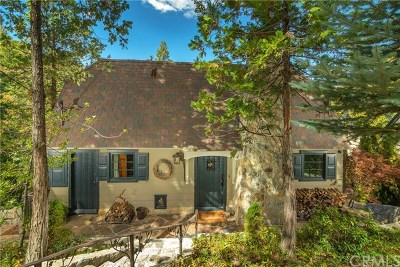 Lake Arrowhead Single Family Home For Sale: 28910 Palisades Drive