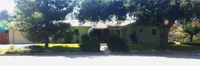 Redlands Single Family Home For Sale: 921 Cedar Avenue