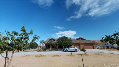 Apple Valley Single Family Home For Sale: 9131 Bowen Ranch Road