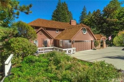 Lake Arrowhead Single Family Home For Sale: 27720 Hamiltair Drive