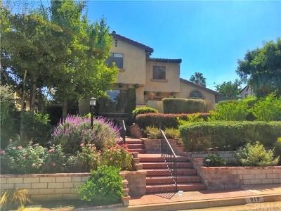 Redlands Single Family Home For Sale: 919 La Flora Drive