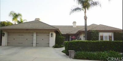 Redlands Single Family Home For Sale: 429 Lantern Crest Drive