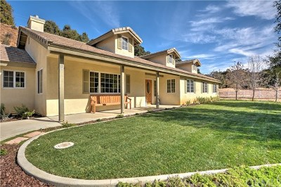 Yucaipa Single Family Home For Sale: 36972 Wildwood Canyon Road