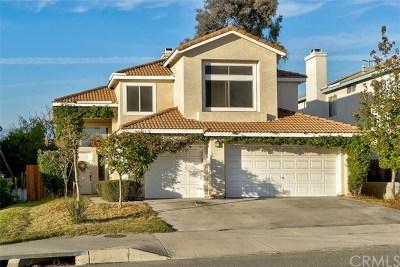 Mentone Single Family Home For Sale: 31264 Nice