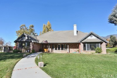 Yucaipa Single Family Home For Sale: 13690 Mesa Verde Drive