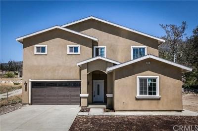 Devore Single Family Home For Sale: 972 Devore Road