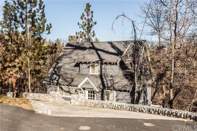 Lake Arrowhead Single Family Home For Sale: 1015 Pintail Circle