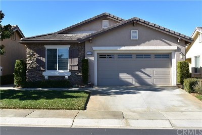 Beaumont Single Family Home For Sale: 135 Tijeras