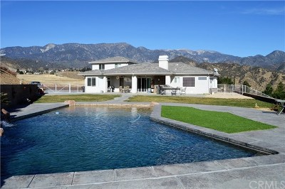 Banning Single Family Home For Sale: 42875 Wingate Drive