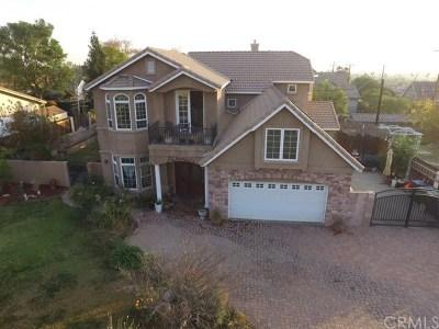 San Bernardino Single Family Home For Sale: 1817 Mesa Verde Drive
