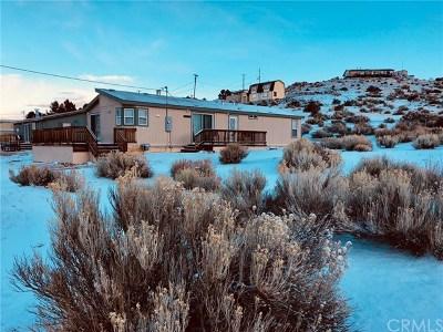 Blue Jay, Cedarpines Park, Crestline, Lake Arrowhead, Running Springs Area, Twin Peaks, Big Bear, Rimforest, Cedar Glen, Arrowbear Single Family Home For Sale: 1733 Baldwin Lake Road