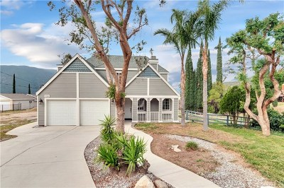 San Bernardino Single Family Home For Sale: 950 Greenwood Avenue