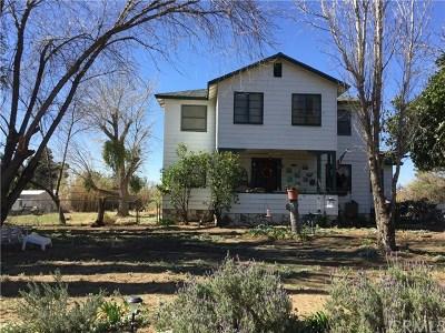 Cherry Valley Single Family Home For Sale: 10943 Bellflower Avenue