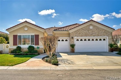 Beaumont Single Family Home For Sale: 971 Ironwood Road