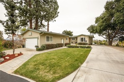 Redlands Single Family Home For Sale: 31307 Alta Vista Drive
