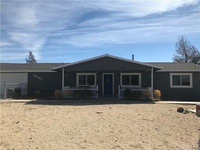 Lucerne Valley Single Family Home For Sale: 35737 Sage Street