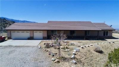 Llano Single Family Home For Sale: 29009 195th Street E