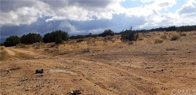 Hesperia Residential Lots & Land For Sale: Ranchero
