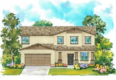 San Jacinto Single Family Home For Sale: 1053 Eden Valley Way