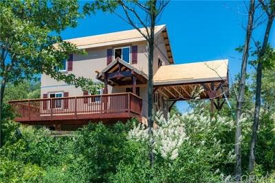 Cedar Glen Single Family Home For Sale: 29604 Pine Ridge Drive