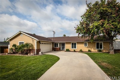Redlands Single Family Home For Sale: 347 Lakeside Avenue