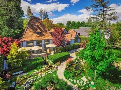 Lake Arrowhead Single Family Home For Sale: 28233 North Shore Road
