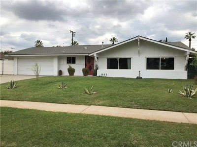 Redlands Single Family Home For Sale: 206 Ryan Street